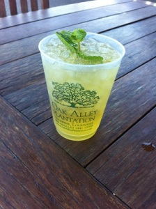 A shot of my first mint julep at Oak Alley Plantation (New Orleans)